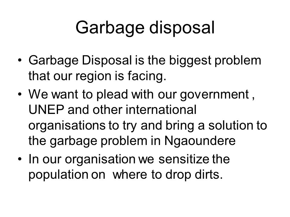 Garbage disposal Garbage Disposal is the biggest problem that our region is facing.