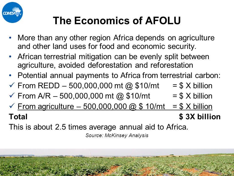 The Economics of AFOLU More than any other region Africa depends on agriculture and other land uses for food and economic security.