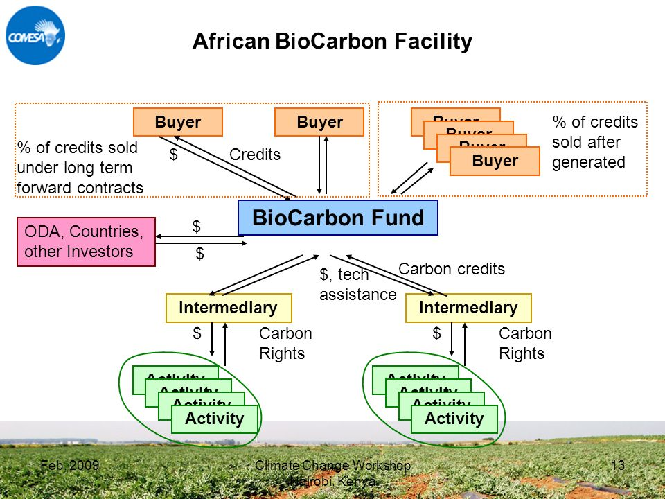 Feb, 2009Climate Change Workshop Nairobi, Kenya 13 African BioCarbon Facility BioCarbon Fund Buyer $ Credits Intermediary Activity $ Carbon Rights Intermediary Activity $ Carbon Rights Carbon credits $, tech assistance Buyer % of credits sold under long term forward contracts % of credits sold after generated ODA, Countries, other Investors $ $