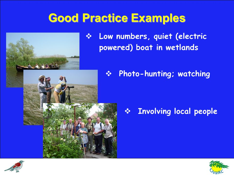 Good Practice Examples Low numbers, quiet (electric powered) boat in wetlands Photo-hunting; watching Involving local people