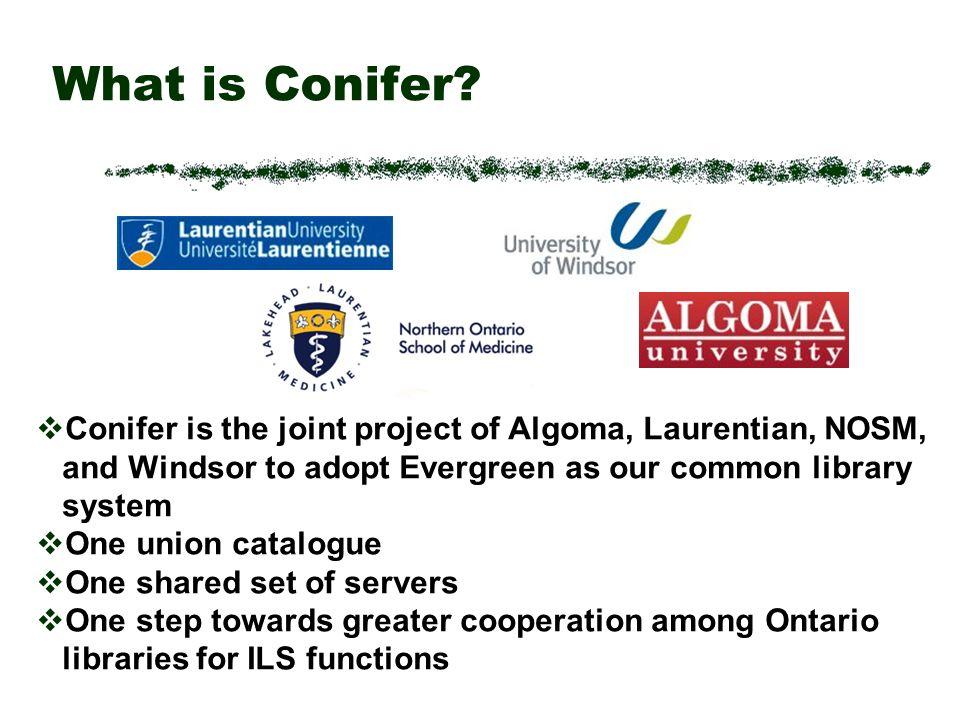 What is Conifer.