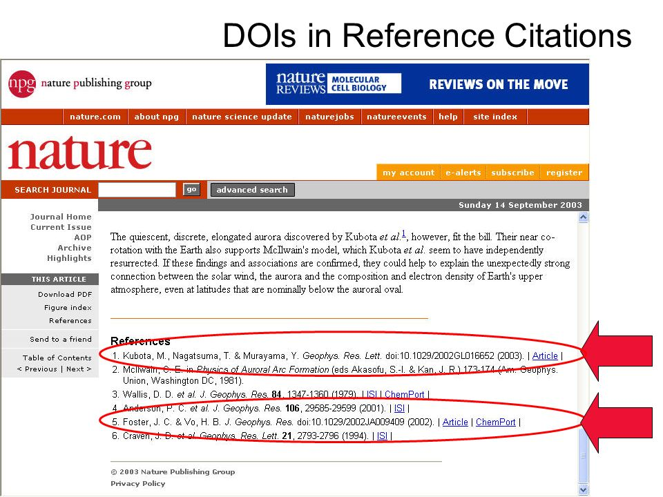 DOIs in Reference Citations