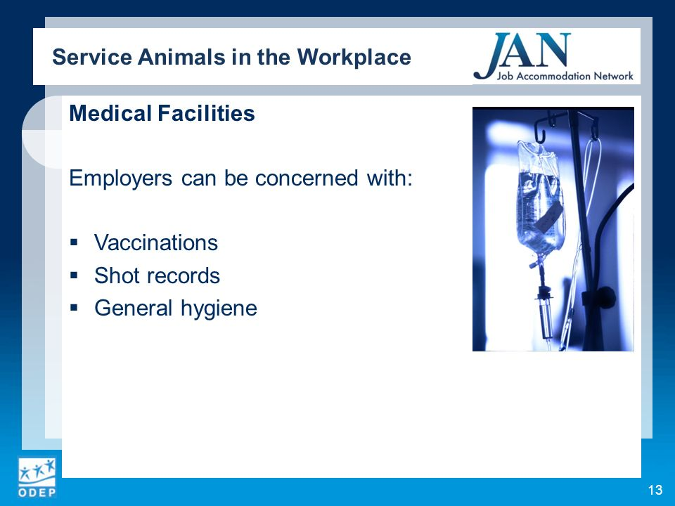 Medical Facilities Employers can be concerned with: Vaccinations Shot records General hygiene Service Animals in the Workplace 13