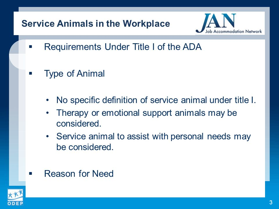 Requirements Under Title I of the ADA Type of Animal No specific definition of service animal under title I.