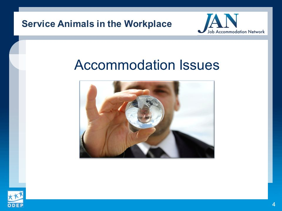 Accommodation Issues Service Animals in the Workplace 4
