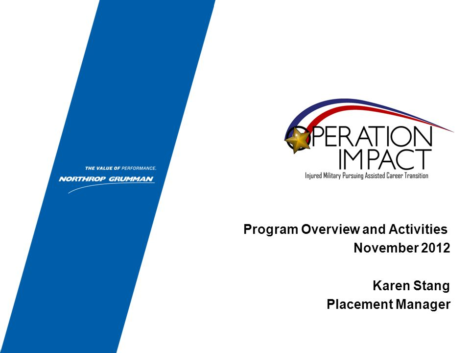 Program Overview and Activities November 2012 Karen Stang Placement Manager
