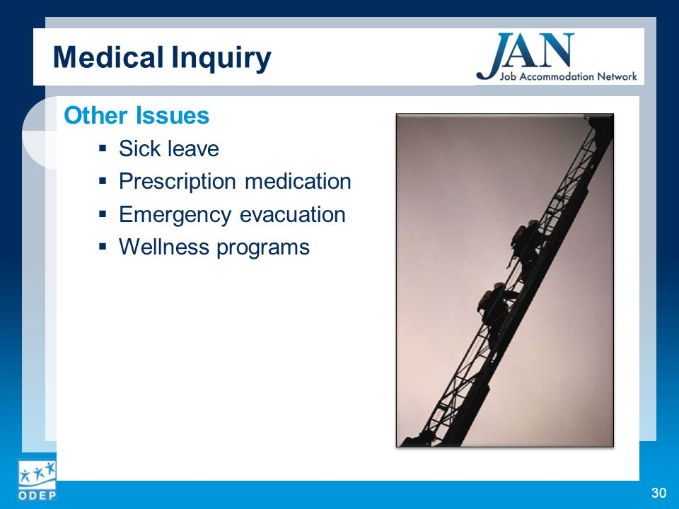 Medical Inquiry Other Issues Sick leave Prescription medication Emergency evacuation Wellness programs 30