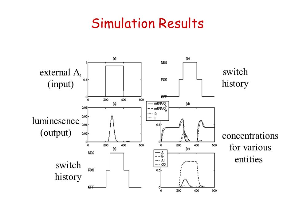 Simulation Results external A i (input) concentrations for various entities luminesence (output) switch history switch history