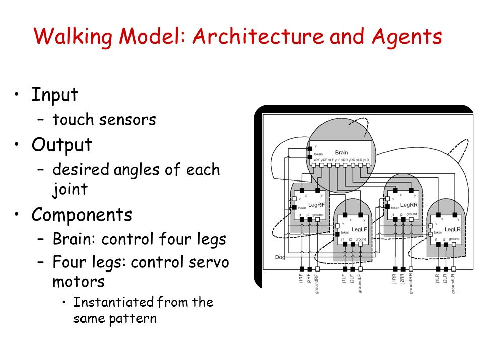 Input –touch sensors Output –desired angles of each joint Components –Brain: control four legs –Four legs: control servo motors Instantiated from the same pattern Walking Model: Architecture and Agents