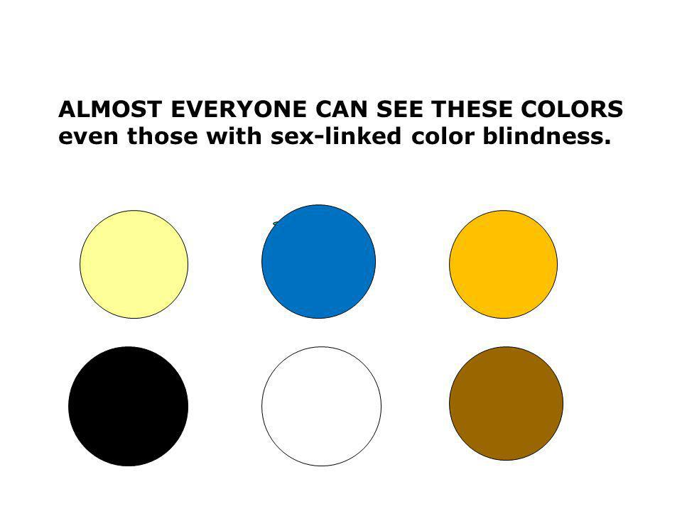 Here are the colors that color blind people see. RED GREEN YELLOW PURPLE