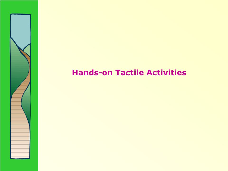 Hands-on Tactile Activities