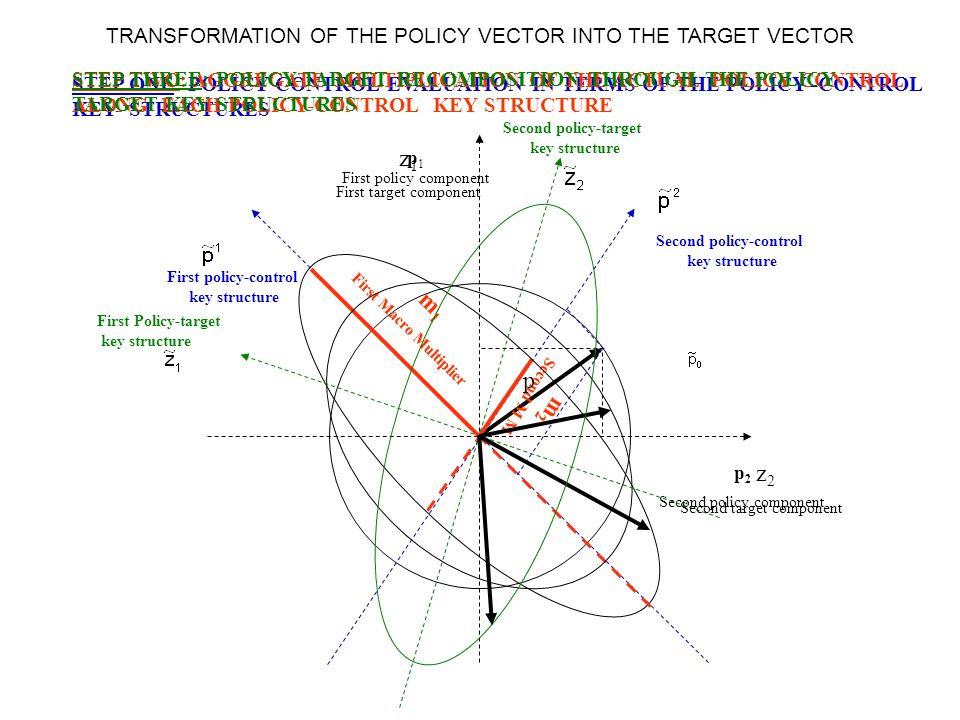 TRANSFORMATION OF THE POLICY VECTOR INTO THE TARGET VECTOR p 2 Second policy component p 1 First policy component STEP ONE: POLICY CONTROL EVALUATION IN TERMS OF THE POLICY–CONTROL KEY- STRUCTURES First policy-control key structure Second policy-control key structure STEP TWO: AGGREGATE MULTIPLICATION OF THE ACTUAL POLICY CONTROL ALONG EACH POLICY-CONTROL KEY STRUCTURE m1m1 First Macro Multiplier m 2 Second M M STEP THREE: POLICY-TARGET RECOMPOSITION THROUGH THE POLICY TARGET KEY STRUCTURES First Policy-target key structure Second policy-target key structure z1z1 z2z2 p First target component Second target component