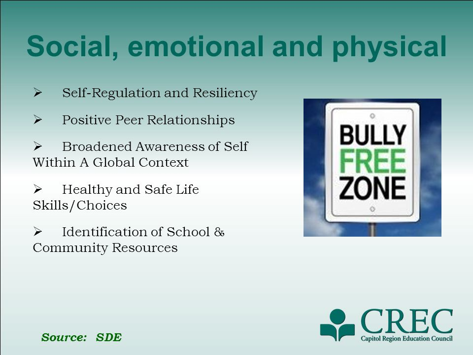 Social, emotional and physical Self-Regulation and Resiliency Positive Peer Relationships Broadened Awareness of Self Within A Global Context Healthy and Safe Life Skills/Choices Identification of School & Community Resources Source: SDE