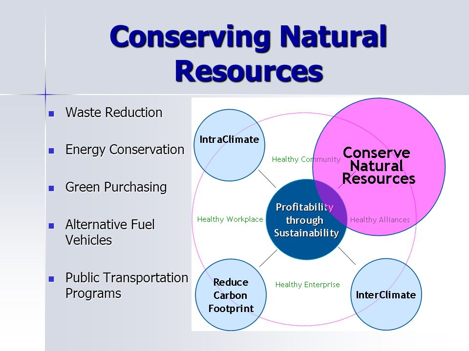 Conserving Natural Resources Waste Reduction Waste Reduction Energy Conservation Energy Conservation Green Purchasing Green Purchasing Alternative Fuel Vehicles Alternative Fuel Vehicles Public Transportation Programs Public Transportation Programs