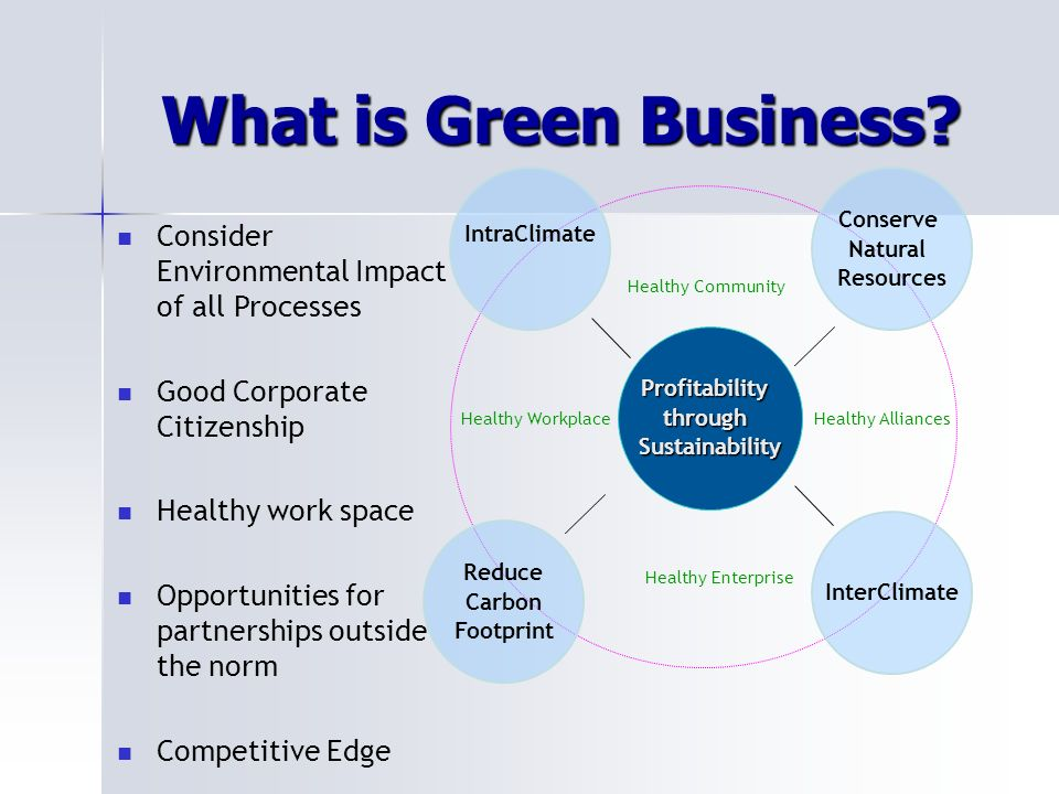 ProfitabilitythroughSustainability Healthy Alliances Healthy Community Healthy Workplace IntraClimate Conserve Natural Resources InterClimate Reduce Carbon Footprint Healthy Enterprise What is Green Business.