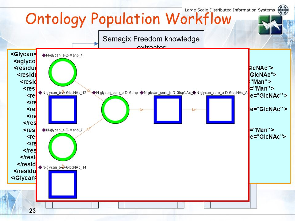 23 Ontology Population Workflow