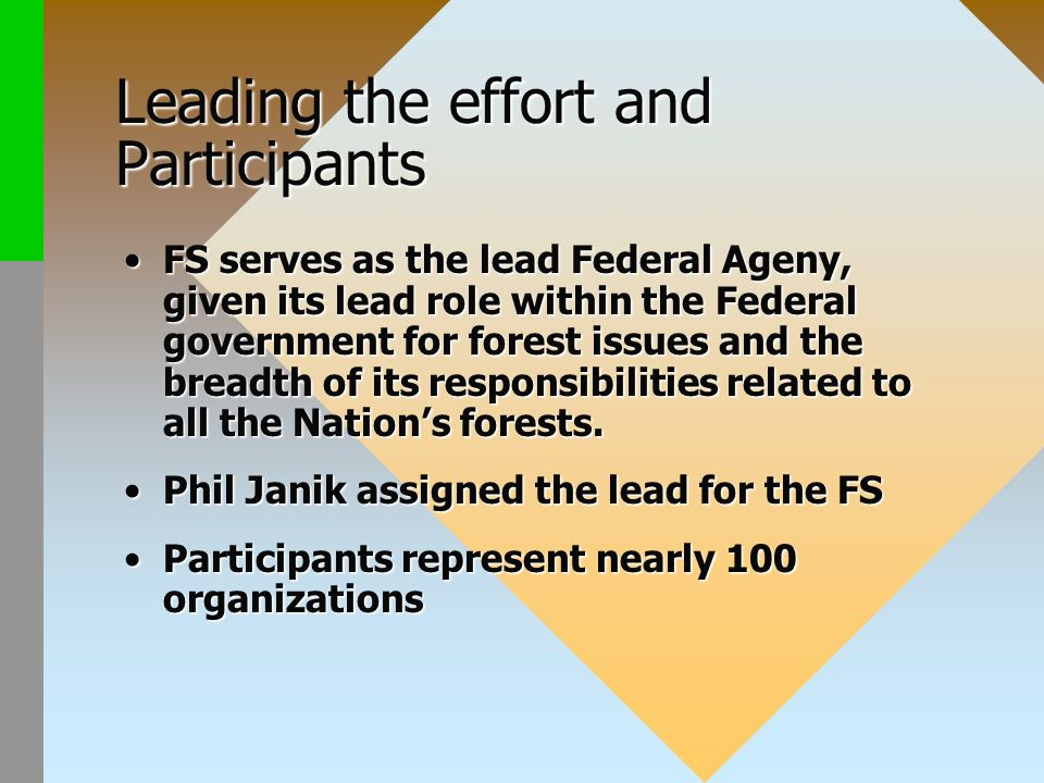Leading the effort and Participants FS serves as the lead Federal Ageny, given its lead role within the Federal government for forest issues and the breadth of its responsibilities related to all the Nations forests.FS serves as the lead Federal Ageny, given its lead role within the Federal government for forest issues and the breadth of its responsibilities related to all the Nations forests.