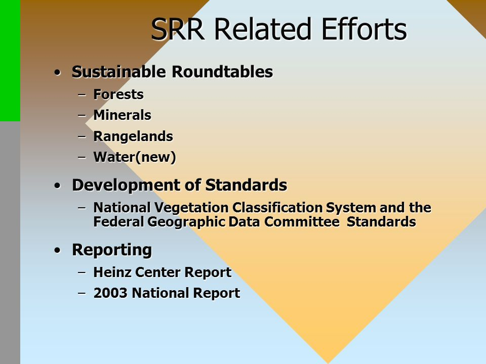 SRR Related Efforts Sustainable RoundtablesSustainable Roundtables –Forests –Minerals –Rangelands –Water(new) Development of StandardsDevelopment of Standards –National Vegetation Classification System and the Federal Geographic Data Committee Standards ReportingReporting –Heinz Center Report –2003 National Report