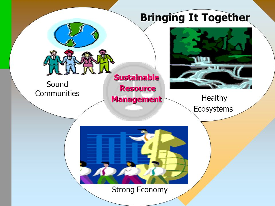 Sound Communities Strong Economy Healthy HealthyEcosystems Sustainable Resource ResourceManagement Bringing It Together Bringing It Together