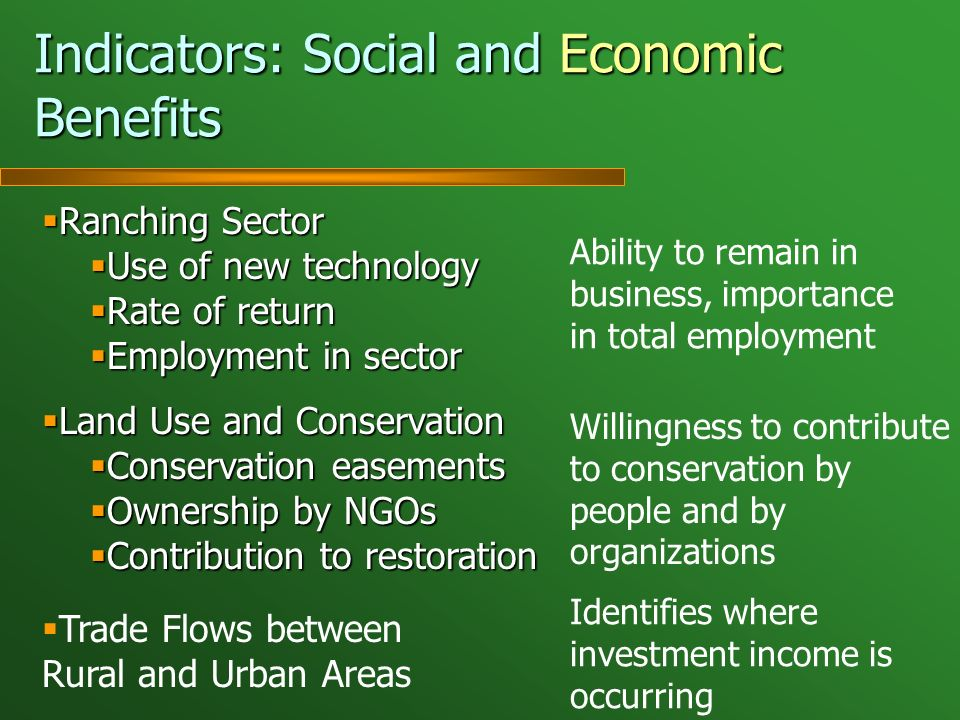 Indicators: Social and Economic Benefits Ranching Sector Ranching Sector Use of new technology Use of new technology Rate of return Rate of return Employment in sector Employment in sector Land Use and Conservation Land Use and Conservation Conservation easements Conservation easements Ownership by NGOs Ownership by NGOs Contribution to restoration Contribution to restoration Trade Flows between Rural and Urban Areas Ability to remain in business, importance in total employment Willingness to contribute to conservation by people and by organizations Identifies where investment income is occurring