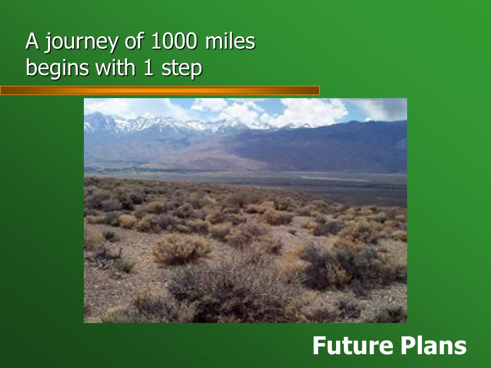 A journey of 1000 miles begins with 1 step Future Plans
