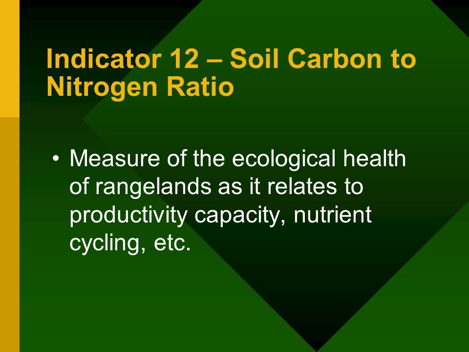 Indicator 12 – Soil Carbon to Nitrogen Ratio Measure of the ecological health of rangelands as it relates to productivity capacity, nutrient cycling, etc.