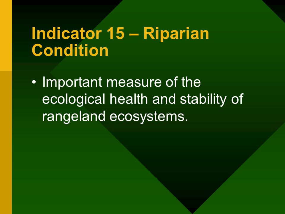 Indicator 15 – Riparian Condition Important measure of the ecological health and stability of rangeland ecosystems.