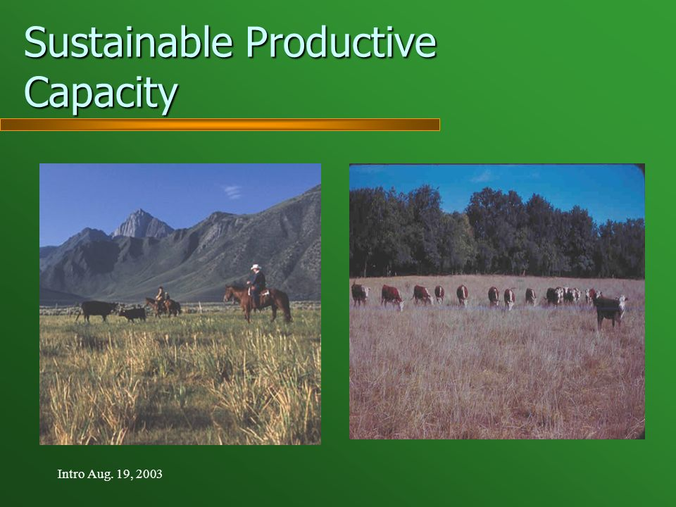Intro Aug. 19, 2003 Sustainable Productive Capacity