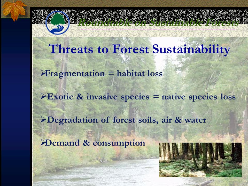 Roundtable on Sustainable Forests Threats to Forest Sustainability Fragmentation = habitat loss Exotic & invasive species = native species loss Degradation of forest soils, air & water Demand & consumption