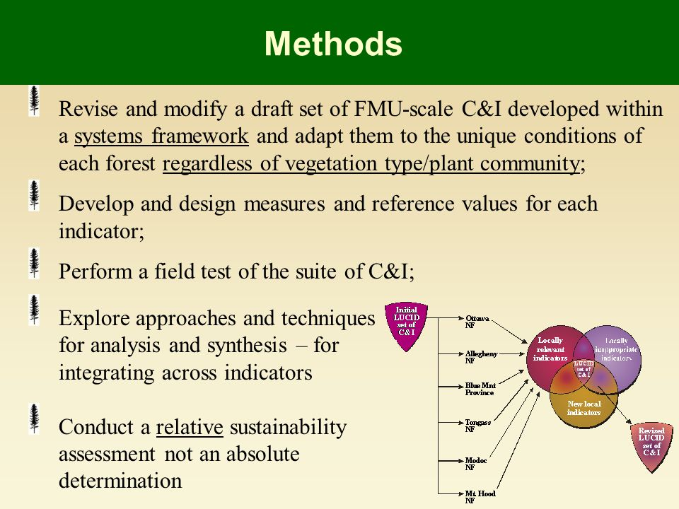 Methods Revise and modify a draft set of FMU-scale C&I developed within a systems framework and adapt them to the unique conditions of each forest regardless of vegetation type/plant community; Develop and design measures and reference values for each indicator; Perform a field test of the suite of C&I; Explore approaches and techniques for analysis and synthesis – for integrating across indicators Conduct a relative sustainability assessment not an absolute determination