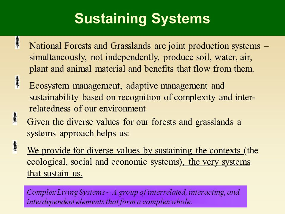 Sustaining Systems National Forests and Grasslands are joint production systems – simultaneously, not independently, produce soil, water, air, plant and animal material and benefits that flow from them.