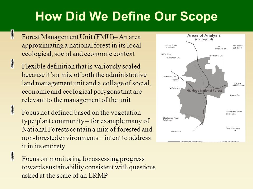 How Did We Define Our Scope Forest Management Unit (FMU)– An area approximating a national forest in its local ecological, social and economic context Flexible definition that is variously scaled because its a mix of both the administrative land management unit and a collage of social, economic and ecological polygons that are relevant to the management of the unit Focus not defined based on the vegetation type/plant community – for example many of National Forests contain a mix of forested and non-forested environments – intent to address it in its entirety Focus on monitoring for assessing progress towards sustainability consistent with questions asked at the scale of an LRMP