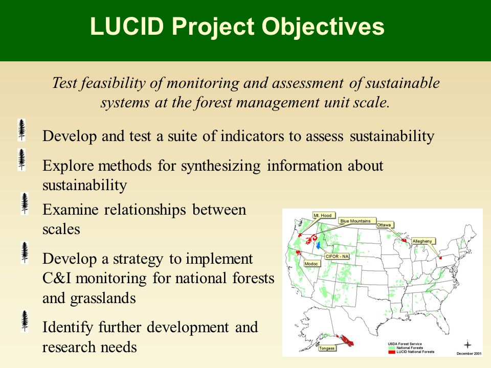 Examine relationships between scales Develop a strategy to implement C&I monitoring for national forests and grasslands Identify further development and research needs Test feasibility of monitoring and assessment of sustainable systems at the forest management unit scale.