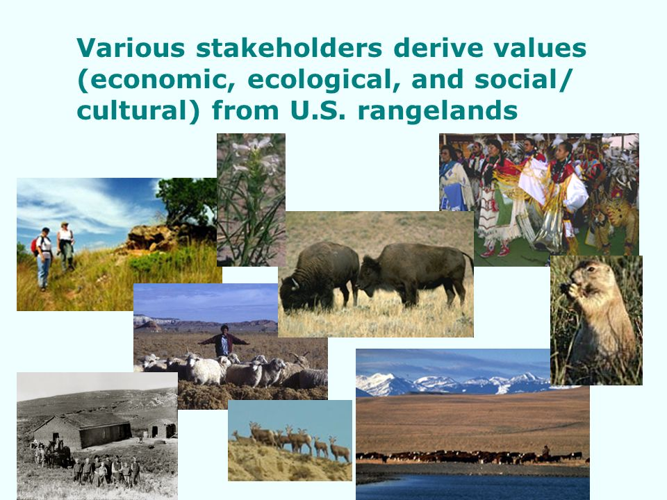 Various stakeholders derive values (economic, ecological, and social/ cultural) from U.S.