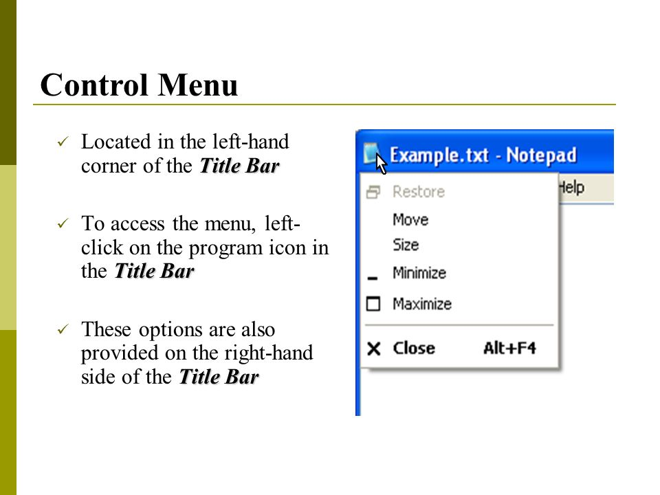 Title Bar Located in the left-hand corner of the Title Bar Title Bar To access the menu, left- click on the program icon in the Title Bar Title Bar These options are also provided on the right-hand side of the Title Bar Control Menu