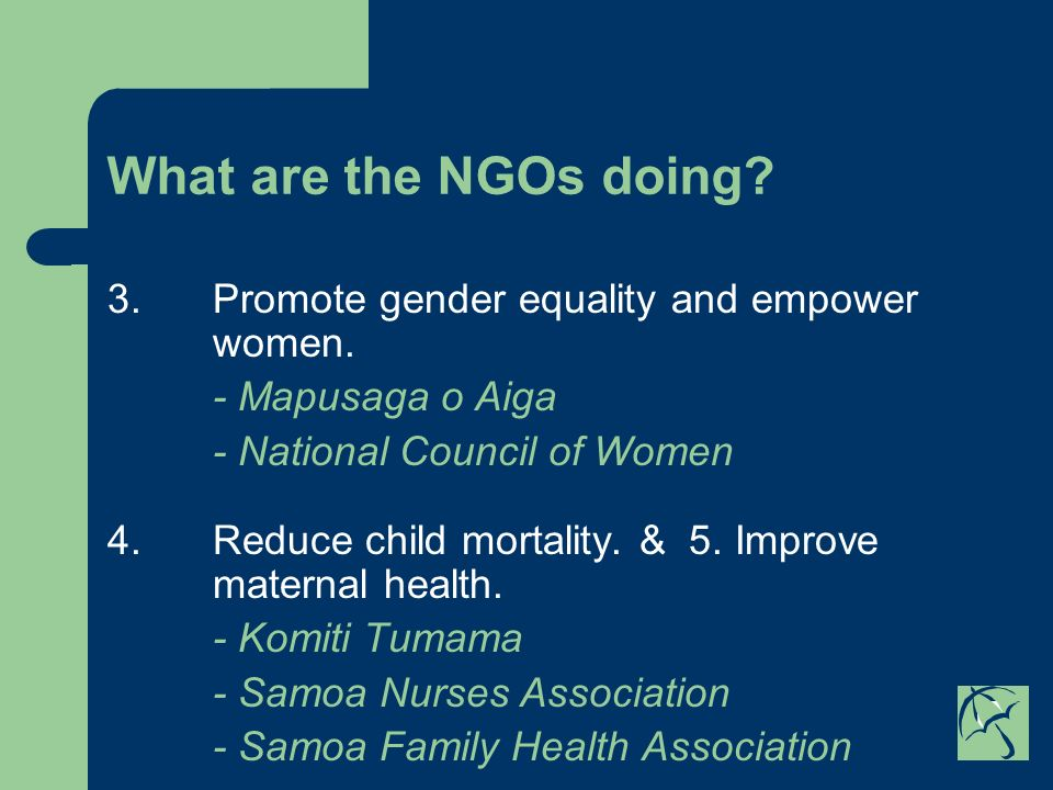 What are the NGOs doing. 3.Promote gender equality and empower women.