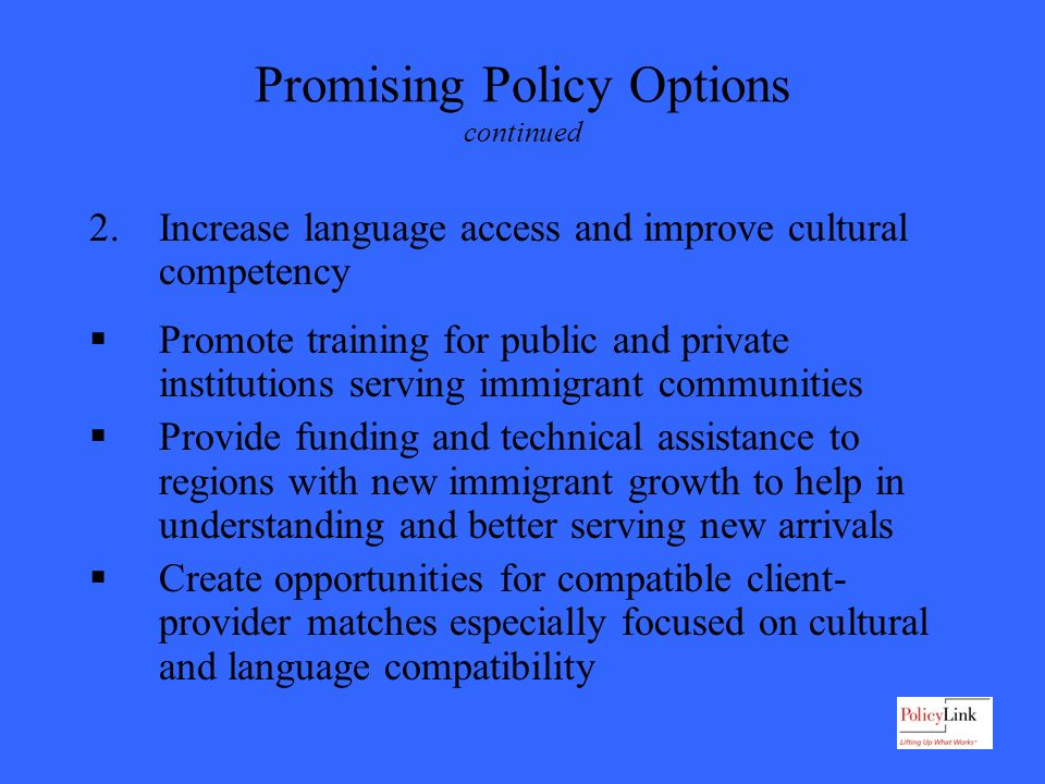 Promising Policy Options continued 2.Increase language access and improve cultural competency Promote training for public and private institutions serving immigrant communities Provide funding and technical assistance to regions with new immigrant growth to help in understanding and better serving new arrivals Create opportunities for compatible client- provider matches especially focused on cultural and language compatibility