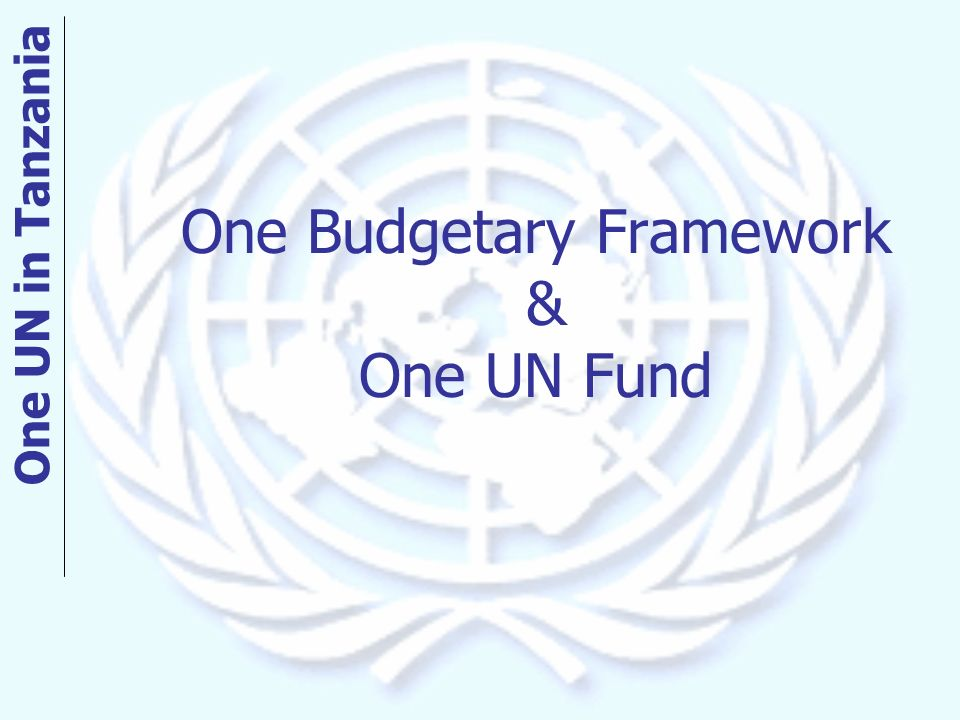 One Budgetary Framework & One UN Fund One UN in Tanzania