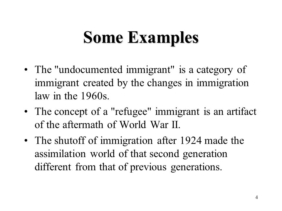 4 Some Examples The undocumented immigrant is a category of immigrant created by the changes in immigration law in the 1960s.