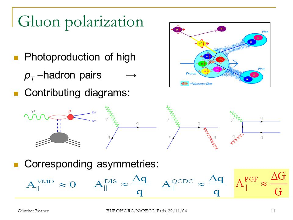 Günther Rosner EUROHORC/NuPECC, Paris, 29/11/04 11 Gluon polarization Photoproduction of high p T –hadron pairs Contributing diagrams: Corresponding asymmetries: