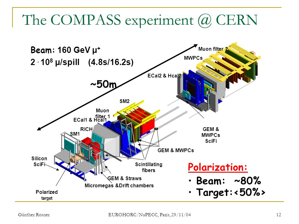 Günther Rosner EUROHORC/NuPECC, Paris, 29/11/04 12 The COMPASS CERN Polarization: Beam: ~80% Target: Beam: 160 GeV µ + 2.