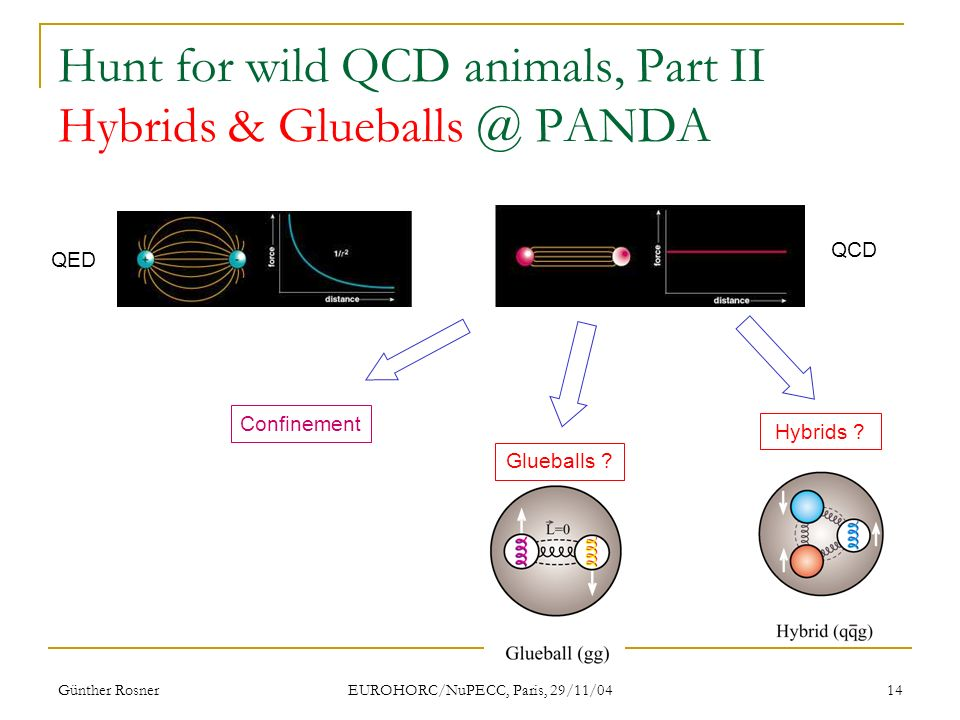 Günther Rosner EUROHORC/NuPECC, Paris, 29/11/04 14 Hunt for wild QCD animals, Part II Hybrids & PANDA QED QCD Confinement Hybrids .