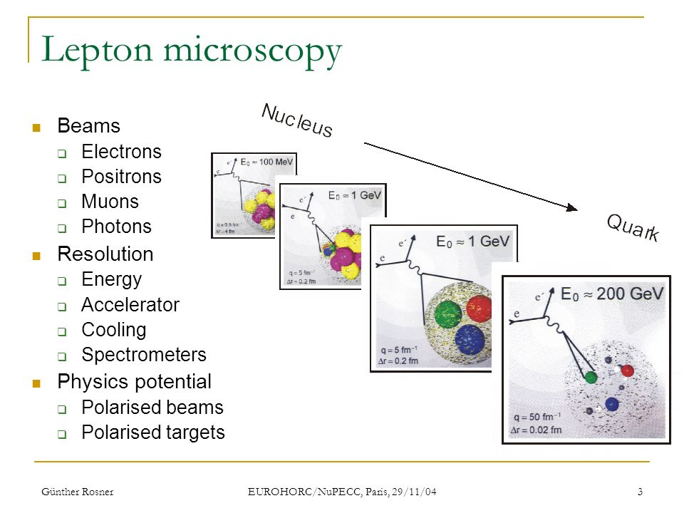 Günther Rosner EUROHORC/NuPECC, Paris, 29/11/04 3 Lepton microscopy Beams Electrons Positrons Muons Photons Resolution Energy Accelerator Cooling Spectrometers Physics potential Polarised beams Polarised targets