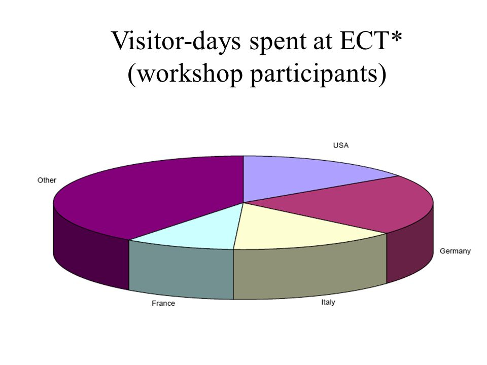 Visitor-days spent at ECT* (workshop participants)