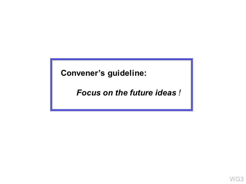 Conveners guideline: Focus on the future ideas ! WG3