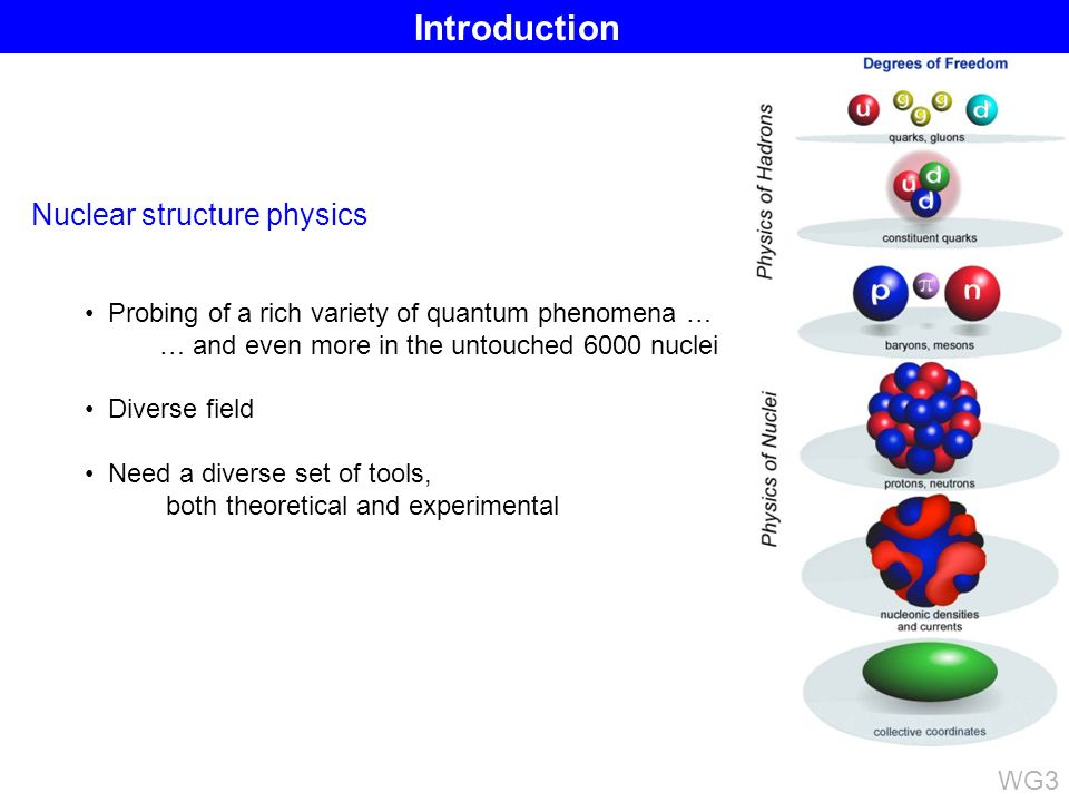 Nuclear structure physics Probing of a rich variety of quantum phenomena … … and even more in the untouched 6000 nuclei Diverse field Need a diverse set of tools, both theoretical and experimental Introduction WG3