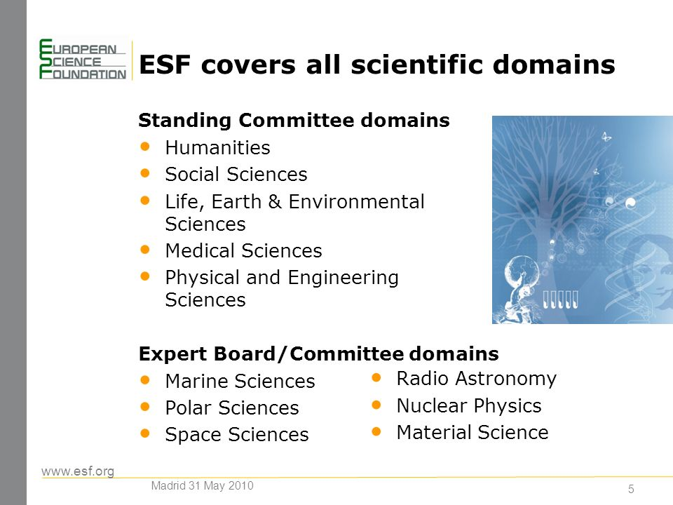5 ESF covers all scientific domains Standing Committee domains Humanities Social Sciences Life, Earth & Environmental Sciences Medical Sciences Physical and Engineering Sciences Expert Board/Committee domains Marine Sciences Polar Sciences Space Sciences Radio Astronomy Nuclear Physics Material Science Madrid 31 May 2010