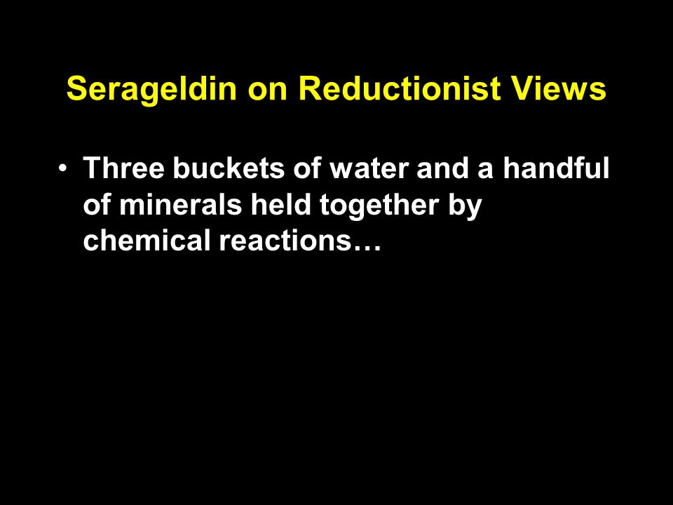 Serageldin on Reductionist Views Three buckets of water and a handful of minerals held together by chemical reactions… A society is more than the sum of its economic and financial transactions…