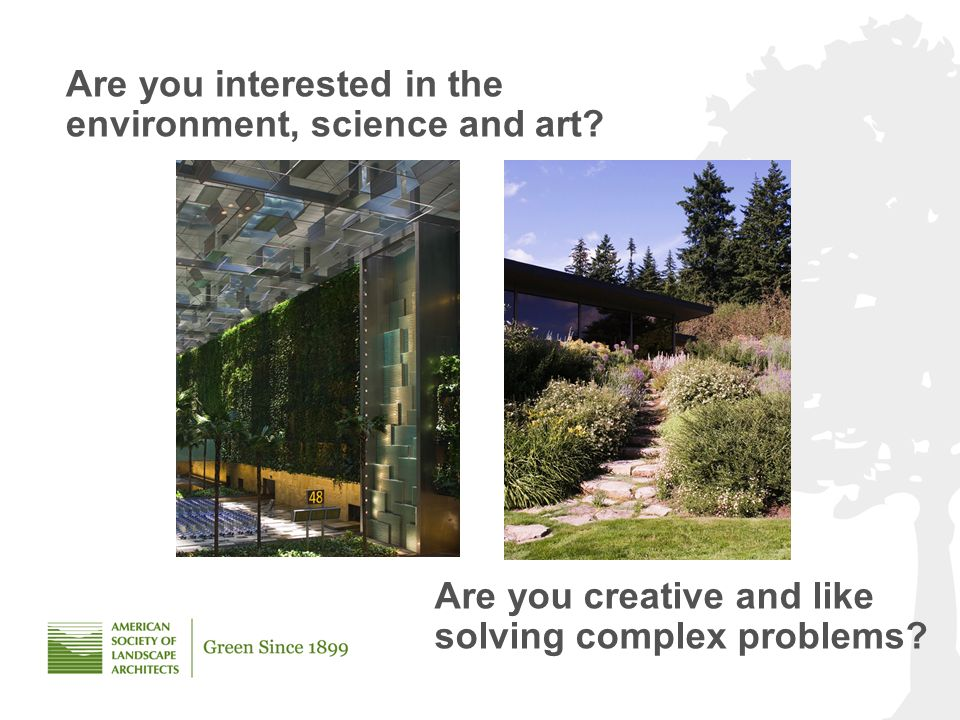 Are you interested in the environment, science and art.