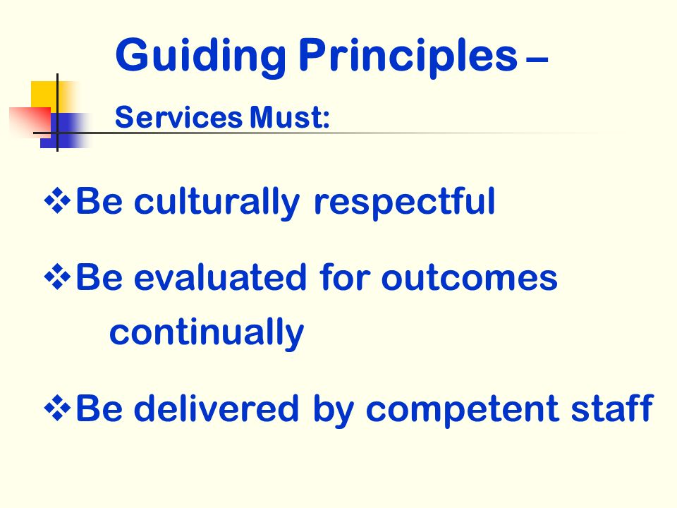 Be culturally respectful Be evaluated for outcomes continually Be delivered by competent staff Guiding Principles – Services Must: